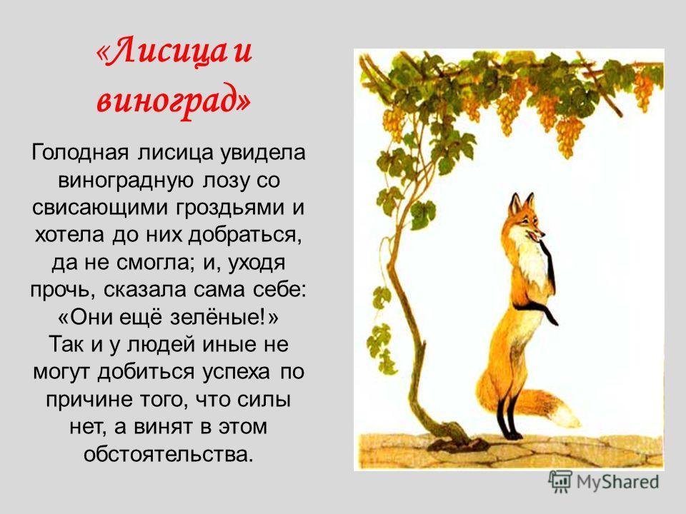 «Лисица и виноград» Голодная лисица увидела виноградную лозу со свисающими гроздьями и хотела до них добраться, да не смогла; и, уходя прочь, сказала сама себе: «Они ещё зелёные!» Так и у людей иные не могут добиться успеха по причине того, что силы
