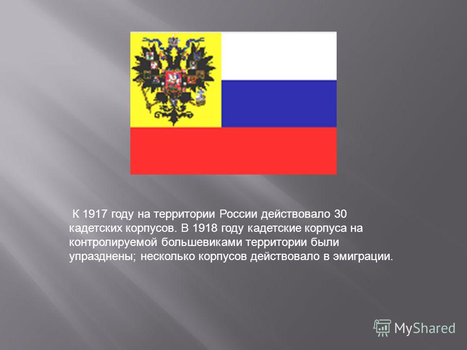 К 1917 году на территории России действовало 30 кадетских корпусов. В 1918 году кадетские корпуса на контролируемой большевиками территории были упразднены; несколько корпусов действовало в эмиграции.