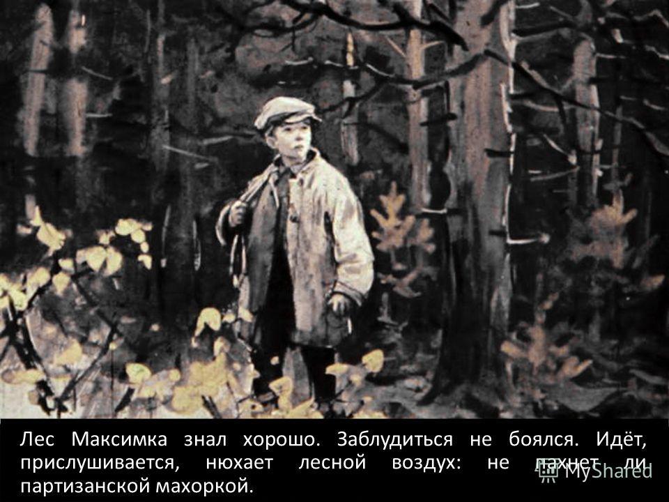 Лес Максимка знал хорошо. Заблудиться не боялся. Идёт, прислушивается, нюхает лесной воздух: не пахнет ли партизанской махоркой.