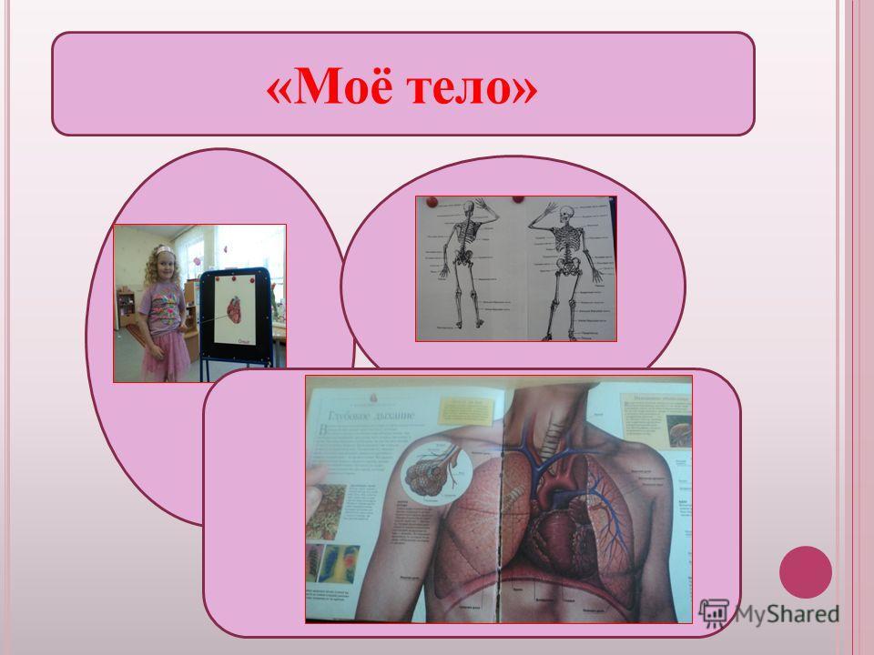 «Моё тело»