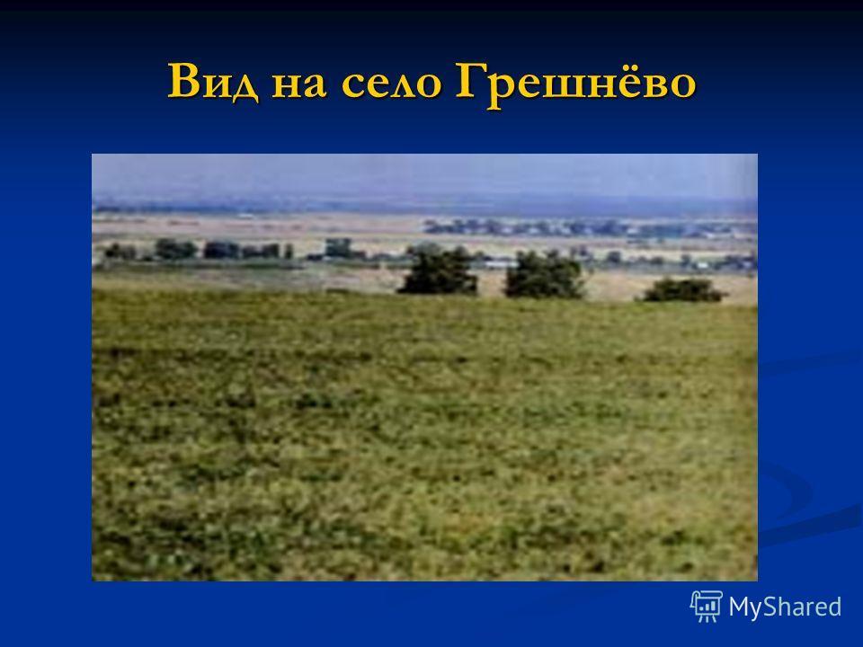 Вид на село Грешнёво