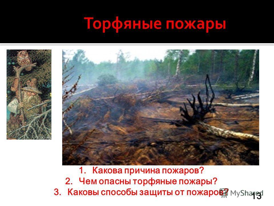 1.Какова причина пожаров? 2.Чем опасны торфяные пожары? 3.Каковы способы защиты от пожаров? 13