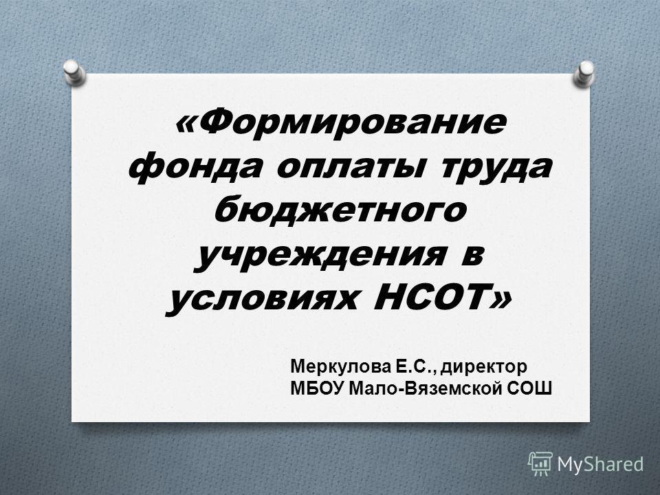 «Формирование фонда оплаты труда бюджетного учреждения в условиях НСОТ» Меркулова Е. С., директор МБОУ Мало - Вяземской СОШ