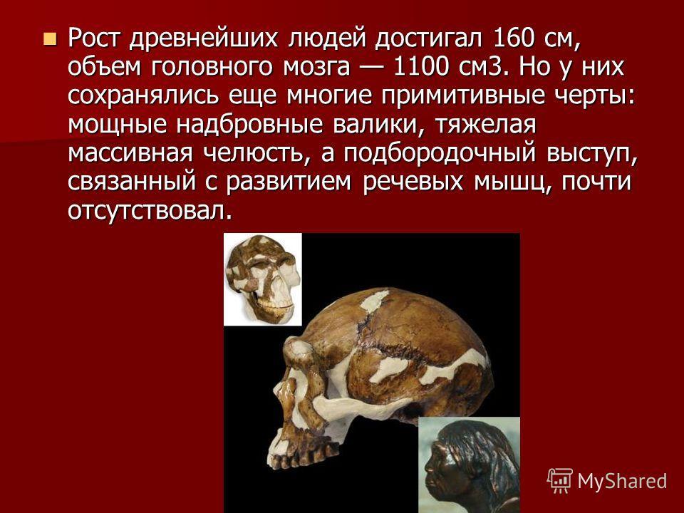 Рост древнейших людей достигал 160 см, объем головного мозга 1100 см3. Но у них сохранялись еще многие примитивные черты: мощные надбровные валики, тяжелая массивная челюсть, а подбородочный выступ, связанный с развитием речевых мышц, почти отсутство