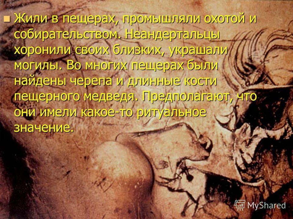 Жили в пещерах, промышляли охотой и собирательством. Неандертальцы хоронили своих близких, украшали могилы. Во многих пещерах были найдены черепа и длинные кости пещерного медведя. Предполагают, что они имели какое-то ритуальное значение. Жили в пеще