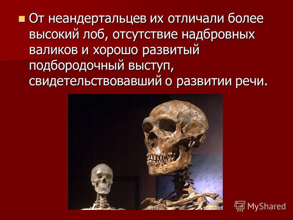 От неандертальцев их отличали более высокий лоб, отсутствие надбровных валиков и хорошо развитый подбородочный выступ, свидетельствовавший о развитии речи. От неандертальцев их отличали более высокий лоб, отсутствие надбровных валиков и хорошо развит