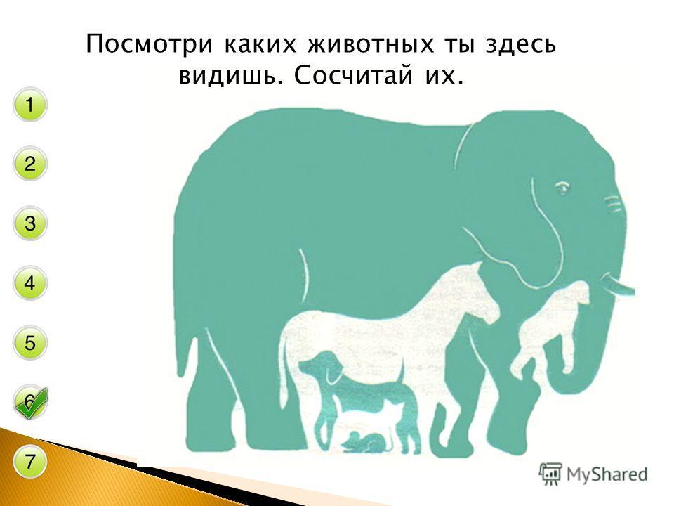 Посмотри каких животных ты здесь видишь. Сосчитай их.
