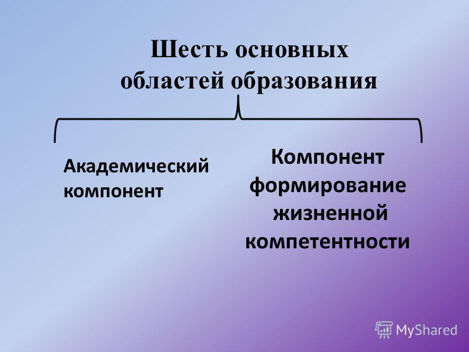 Шесть основных областей образования Академический компонент Компонент формирование жизненной компетентности