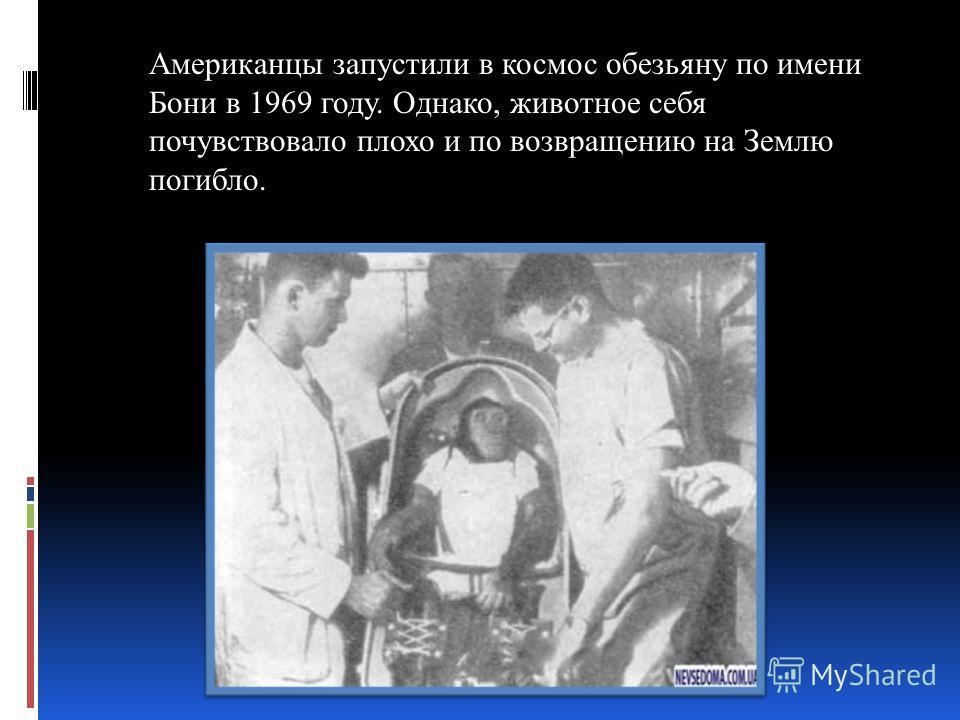 Американцы запустили в космос обезьяну по имени Бони в 1969 году. Однако, животное себя почувствовало плохо и по возвращению на Землю погибло.