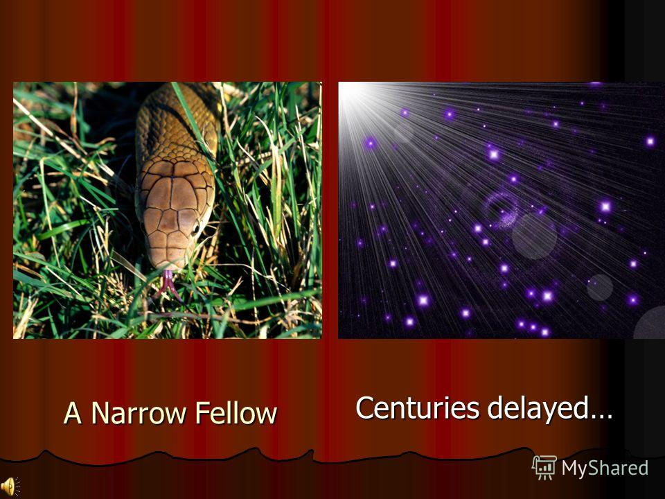 A Narrow Fellow Centuries delayed…