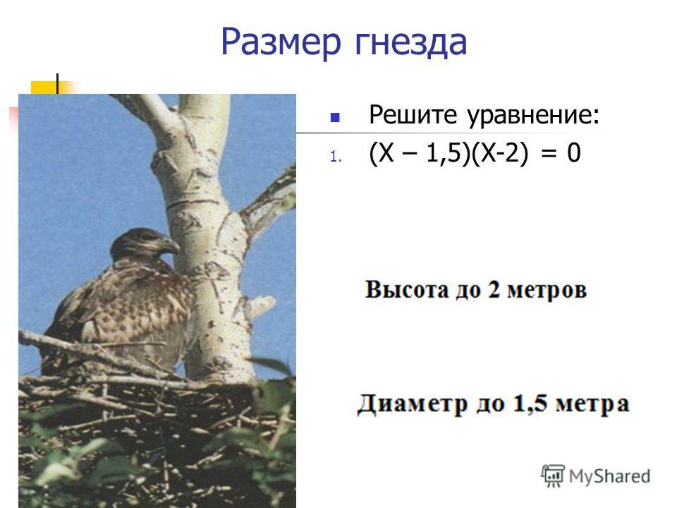 Размер гнезда Решите уравнение: 1. (Х – 1,5)(Х-2) = 0