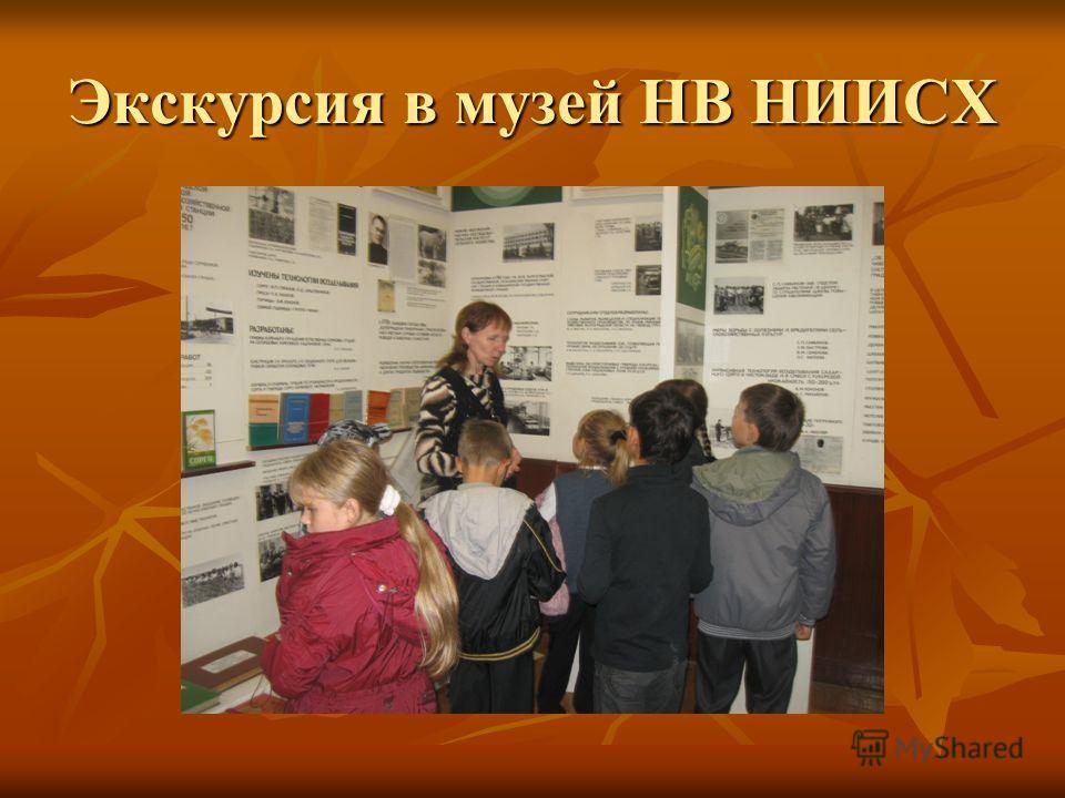 Экскурсия в музей НВ НИИСХ