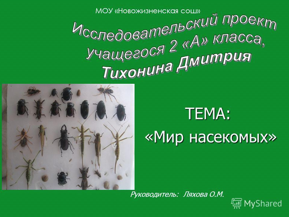 ТЕМА: ТЕМА: «Мир насекомых» «Мир насекомых» МОУ «Новожизненская сош» Руководитель: Ляхова О.М.