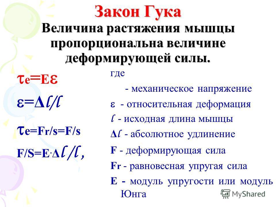 Закон Гука Величина растяжения мышцы пропорциональна величине деформирующей силы. е = E =Δ l/l е=F r /s=F/s F/S=E. Δ l /l, где е - механическое напряжение - относительная деформация l - исходная длина мышцы Δ l - абсолютное удлинение F - деформирующа