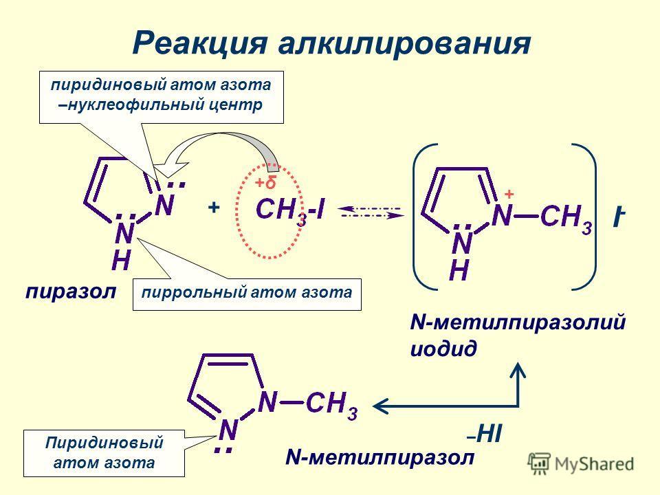 Реакция алкилирования +δ+δ + пиридиновый атом азота –нуклеофильный центр Пиридиновый атом азота пиррольный атом азота I-I- + N-метилпиразолий иодид пиразол N-метилпиразол – HI