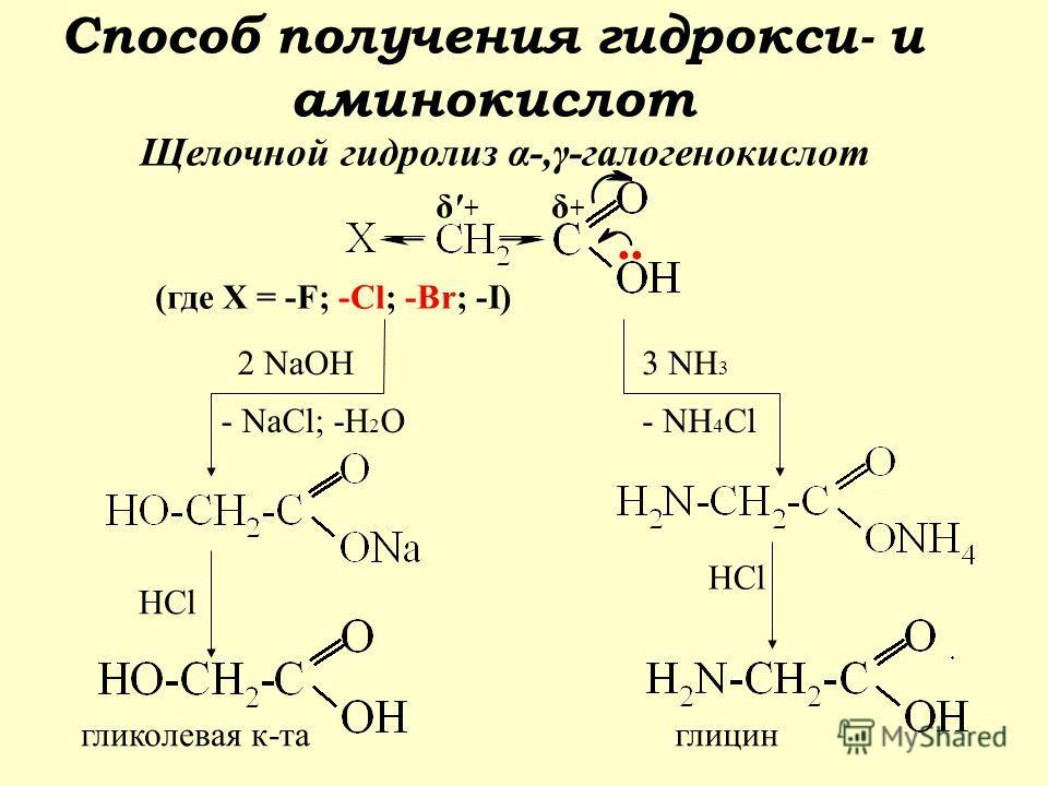 .. (где Х = -F; -Cl; -Br; -I) 2 NaOH - NaCl; -H 2 O HCl гликолевая к-та 3 NH 3 - NH 4 Сl HCl глицин δ+δ+ δ + Способ получения гидрокси- и аминокислот Щелочной гидролиз α-,γ-галогенокислот
