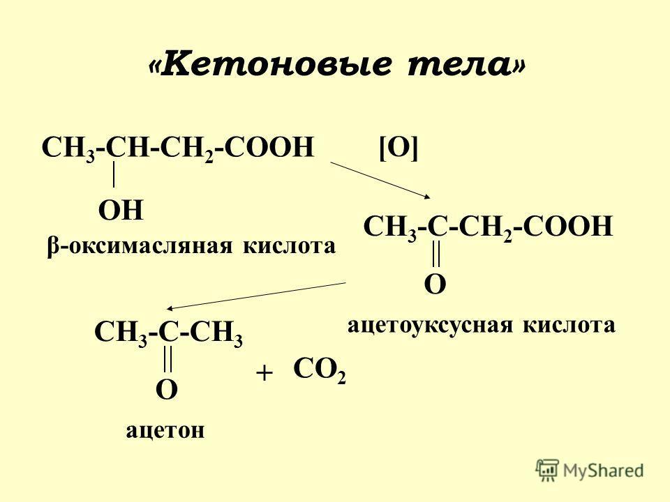«Кетоновые тела» CH 3 -CH-CH 2 -COOH OH β-оксимасляная кислота CH 3 -C-CH 2 -COOH O ацетоуксусная кислота CH 3 -C-CH 3 O ацетон [O] + CO 2