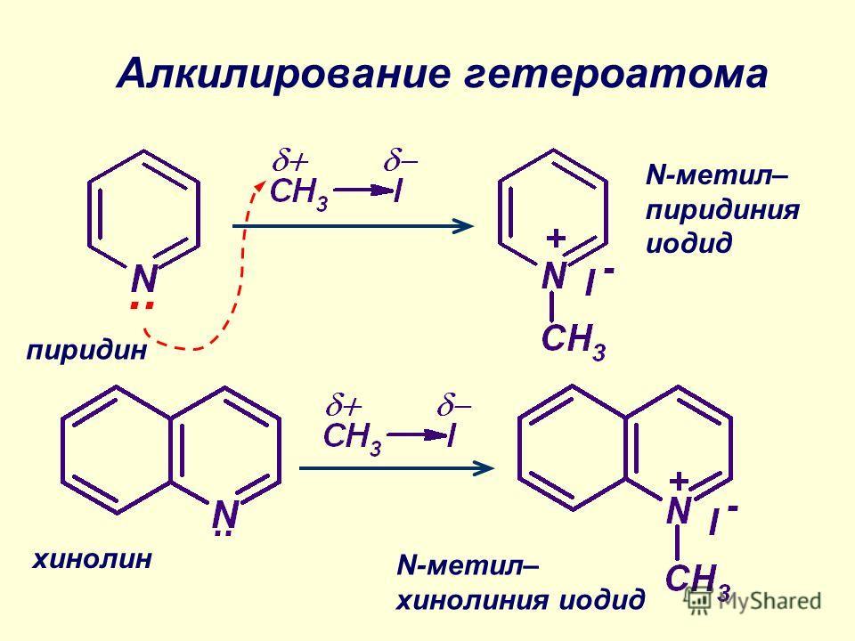 Алкилирование гетероатома пиридин N-метил– пиридиния иодид N-метил– хинолиния иодид хинолин