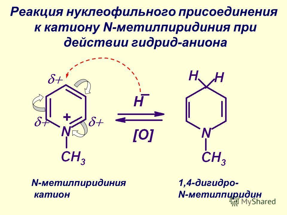 Реакция нуклеофильного присоединения к катиону N-метилпиридиния при действии гидрид-аниона N-метилпиридиния катион 1,4-дигидро- N-метилпиридин