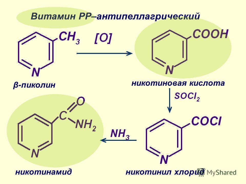 β-пиколин никотиновая кислота никотинил хлоридникотинамид Витамин РР–антипеллагрический