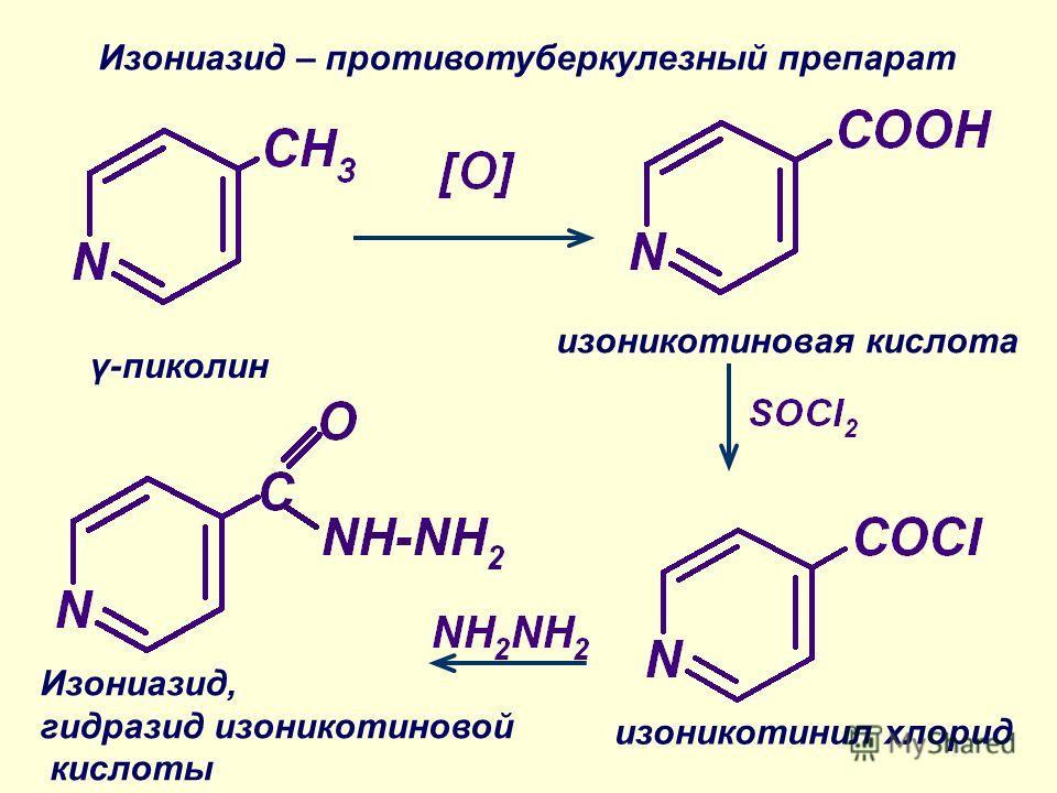 изоникотиновая кислота изоникотинил хлорид Изониазид – противотуберкулезный препарат Изониазид, гидразид изоникотиновой кислоты γ-пиколин