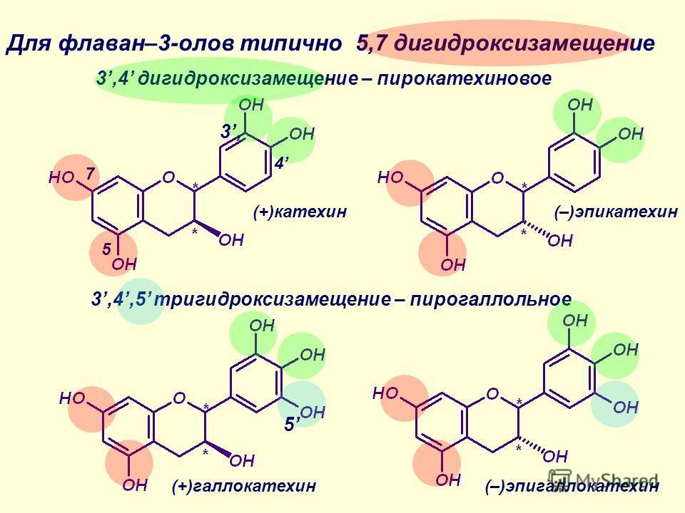 Для флаван–3-олов типично 5,7 дигидроксизамещение 5 7 3,4 дигидроксизамещение – пирокатехиновое 3,4,5 тригидроксизамещение – пирогаллольное 3,3, 4 (+)катехин(–)эпикатехин (+)галлокатехин(–)эпигаллокатехин 5