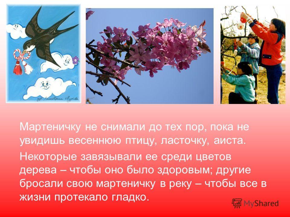 Мартеничку не снимали до тех пор, пока не увидишь весеннюю птицу, ласточку, аиста. Некоторые завязывали ее среди цветов дерева – чтобы оно было здоровым; другие бросали свою мартеничку в реку – чтобы все в жизни протекало гладко.