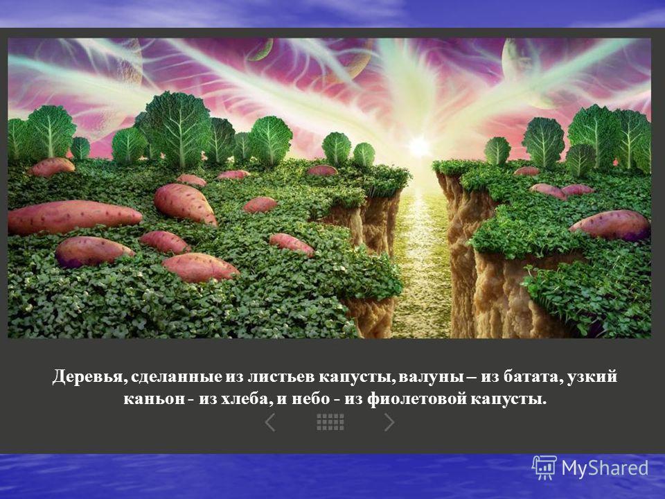 Деревья, сделанные из листьев капусты, валуны – из батата, узкий каньон - из хлеба, и небо - из фиолетовой капусты.