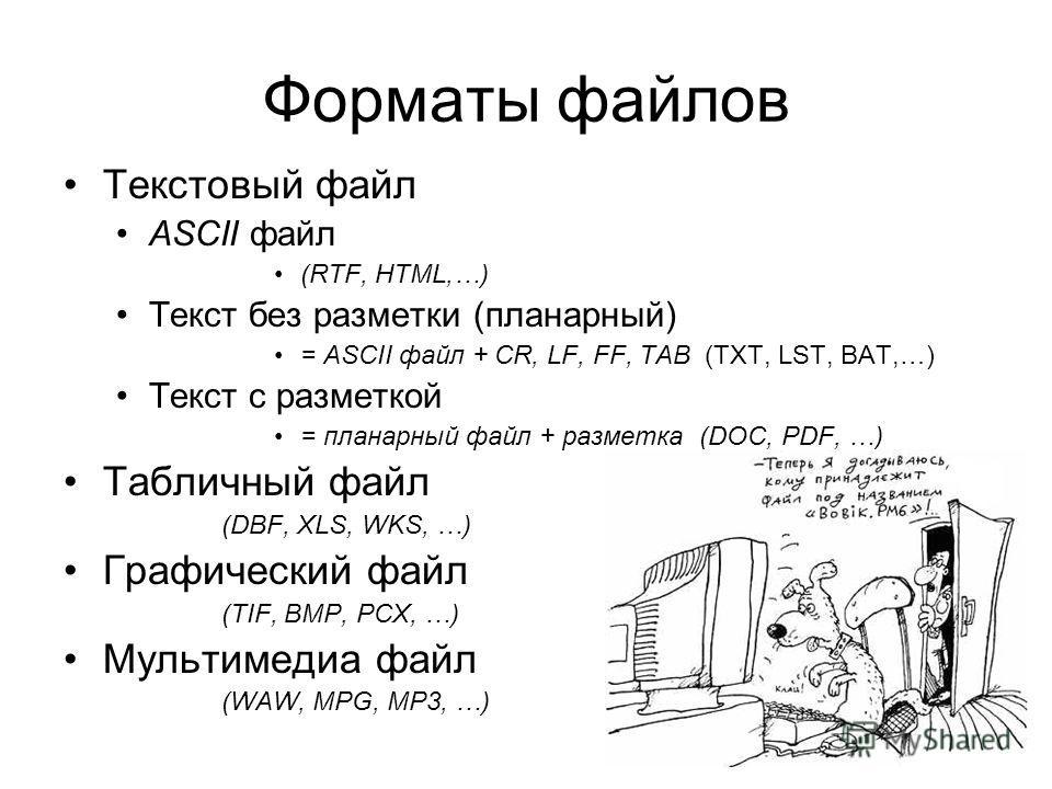 Форматы файлов Текстовый файл ASCII файл (RTF, HTML,…) Текст без разметки (планарный) = ASCII файл + CR, LF, FF, TAB (TXT, LST, BAT,…) Текст с разметкой = планарный файл + разметка (DOC, PDF, …) Табличный файл (DBF, XLS, WKS, …) Графический файл (TIF