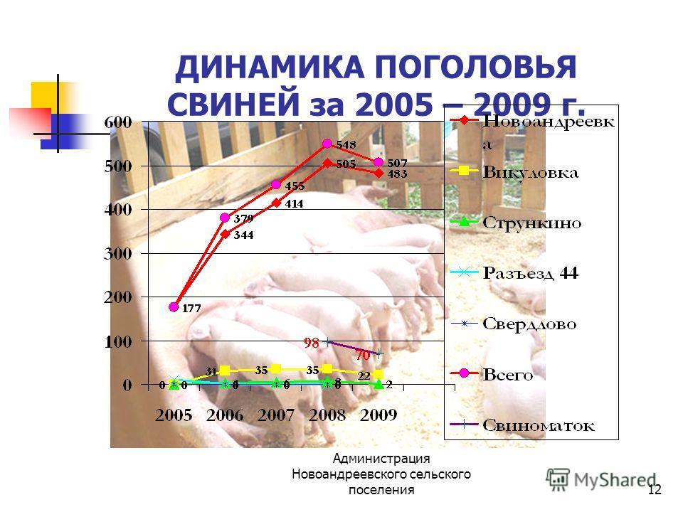 Администрация Новоандреевского сельского поселения12 ДИНАМИКА ПОГОЛОВЬЯ СВИНЕЙ за 2005 – 2009 г.