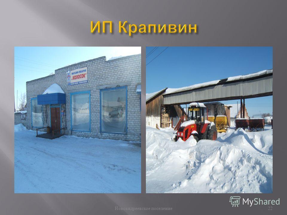 Новоандреевское поселение 22