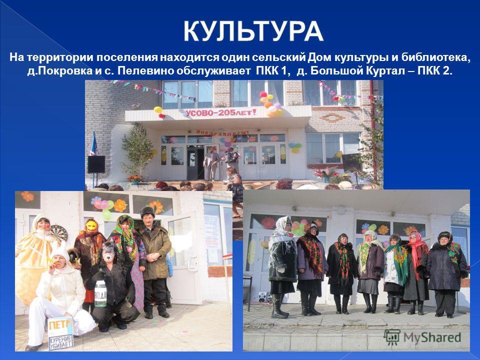 На территории поселения находится один сельский Дом культуры и библиотека, д.Покровка и с. Пелевино обслуживает ПКК 1, д. Большой Куртал – ПКК 2.