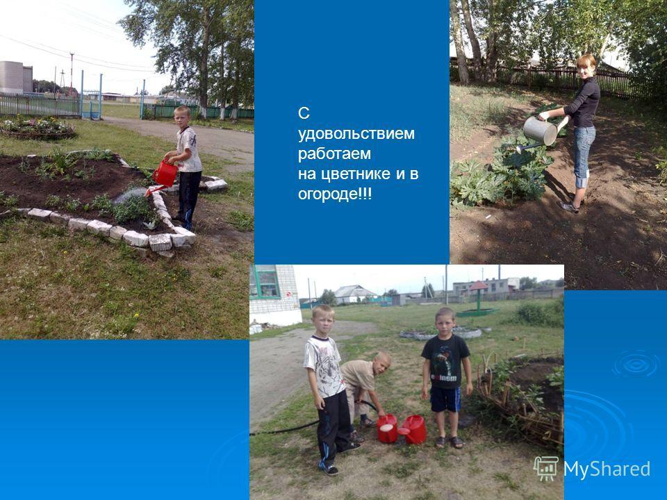 С удовольствием работаем на цветнике и в огороде!!!