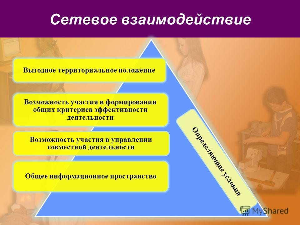 Сетевое взаимодействие Определяющие условия Выгодное территориальное положение Возможность участия в формировании общих критериев эффективности деятельности Возможность участия в управлении совместной деятельности Общее информационное пространство