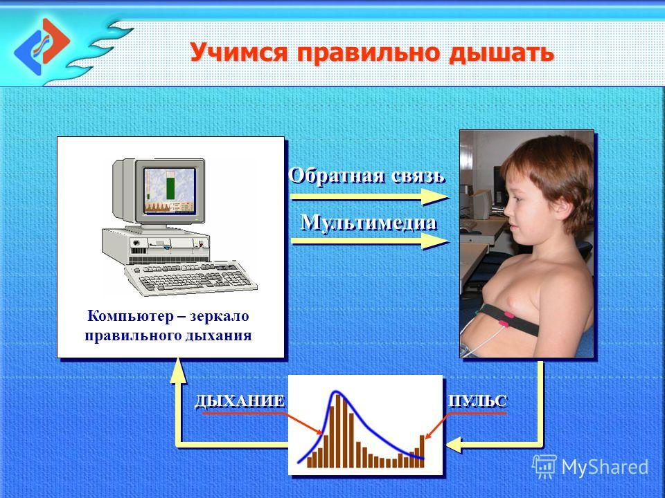 Компьютер – зеркало правильного дыхания Обратная связь Мультимедиа Учимся правильно дышать ПУЛЬС ДЫХАНИЕ