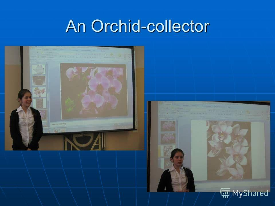 An Orchid-collector