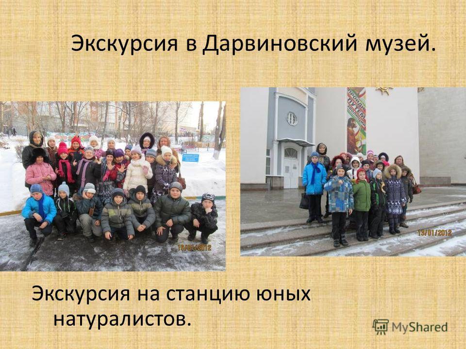 Экскурсия в Дарвиновский музей. Экскурсия на станцию юных натуралистов.