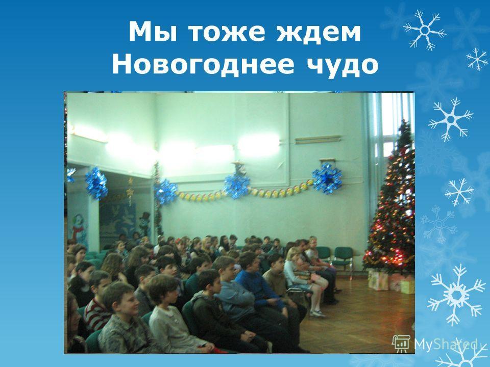 Мы тоже ждем Новогоднее чудо
