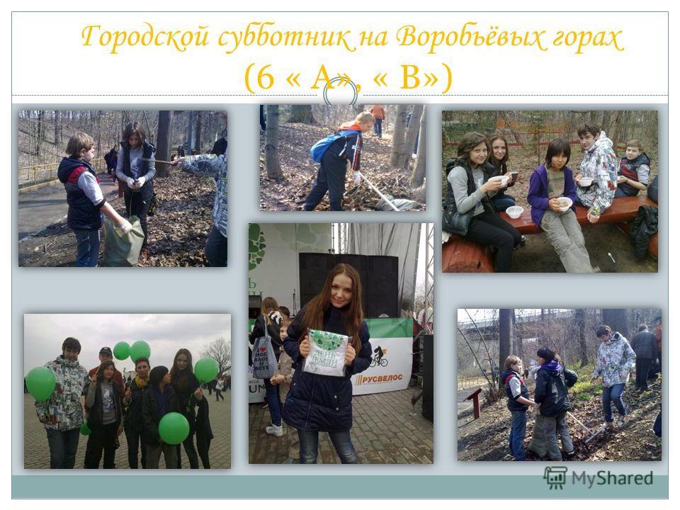 Городской субботник на Воробьёвых горах (6 « А», « В»)