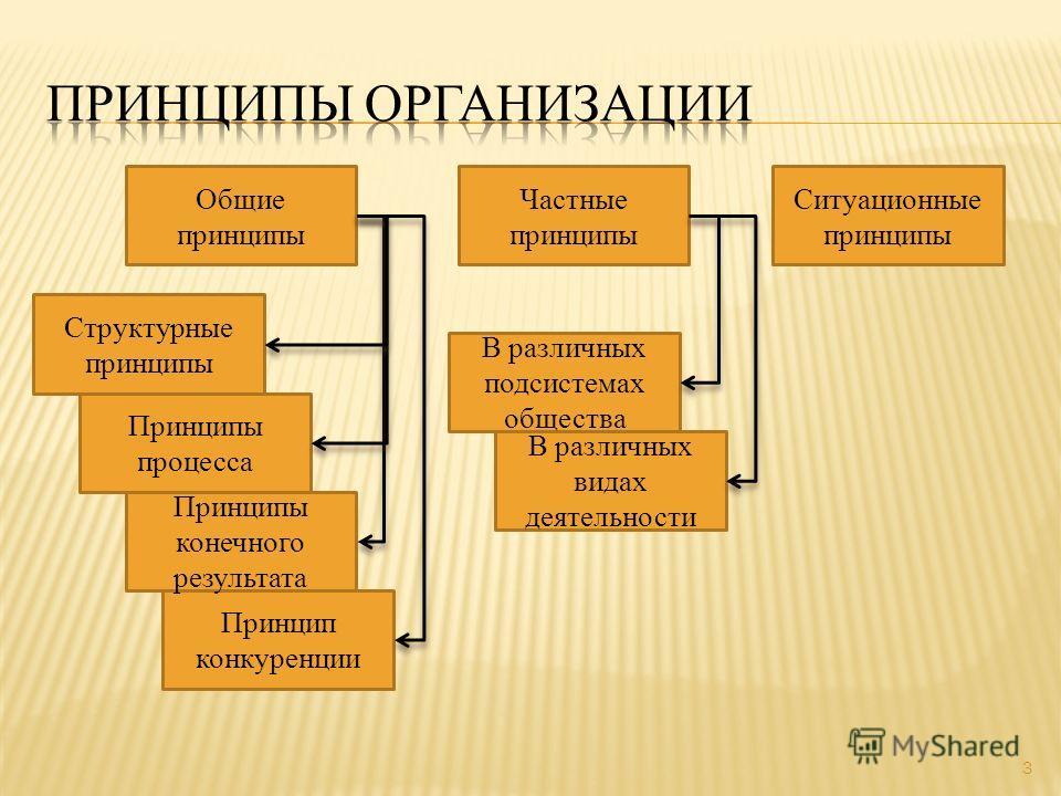 3 Общие принципы Частные принципы Ситуационные принципы В различных видах деятельности В различных подсистемах общества Принцип конкуренции Принципы конечного результата Принципы процесса Структурные принципы
