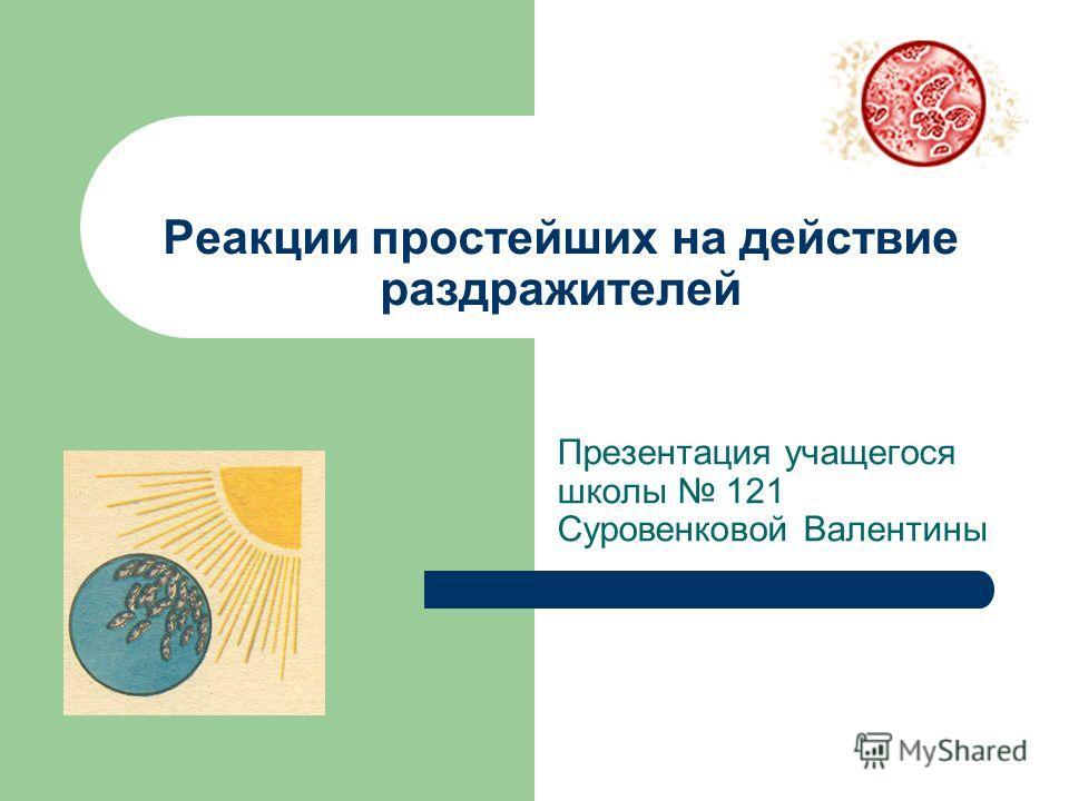 Реакции простейших на действие раздражителей Презентация учащегося школы 121 Суровенковой Валентины