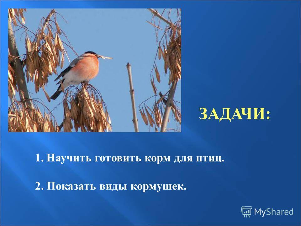 ЗАДАЧИ: 1.Научить готовить корм для птиц. 2. Показать виды кормушек.