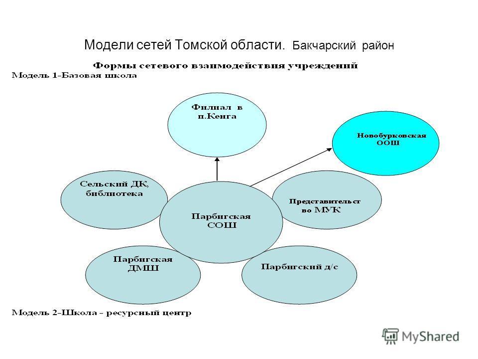 Модели сетей Томской области. Бакчарский район