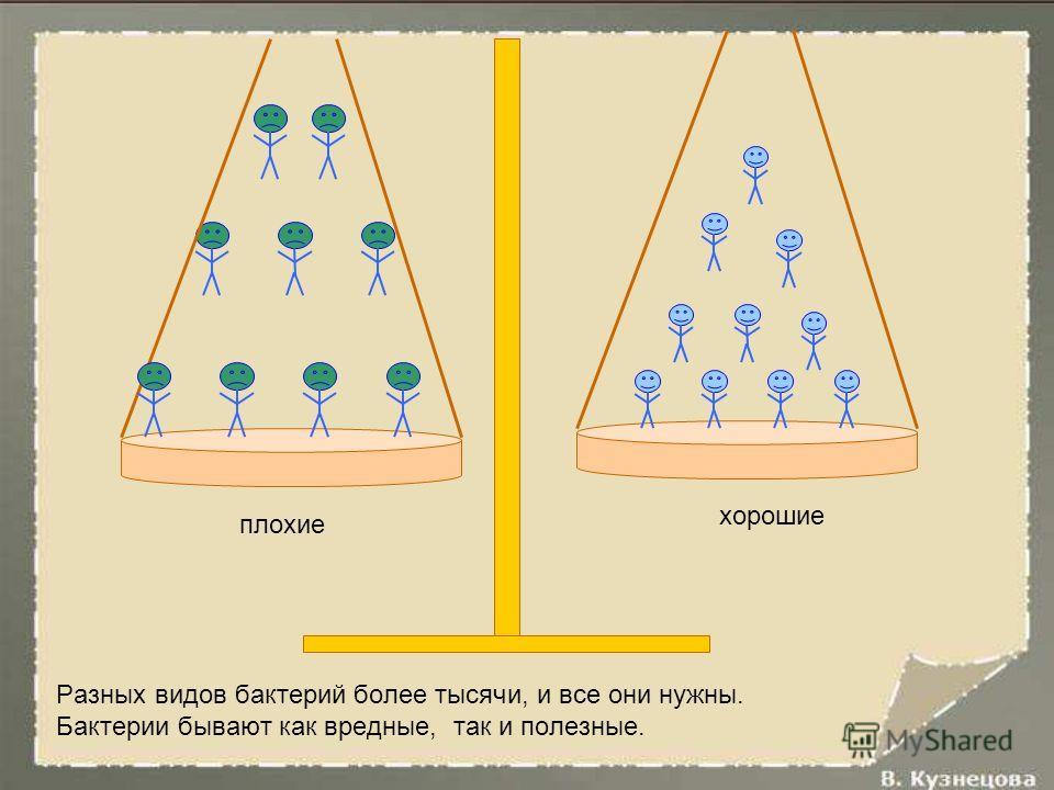 Возникшие миллиарды лет назад слоистые каменные структуры - строматолиты – результат жизнедеятельности бактерий.