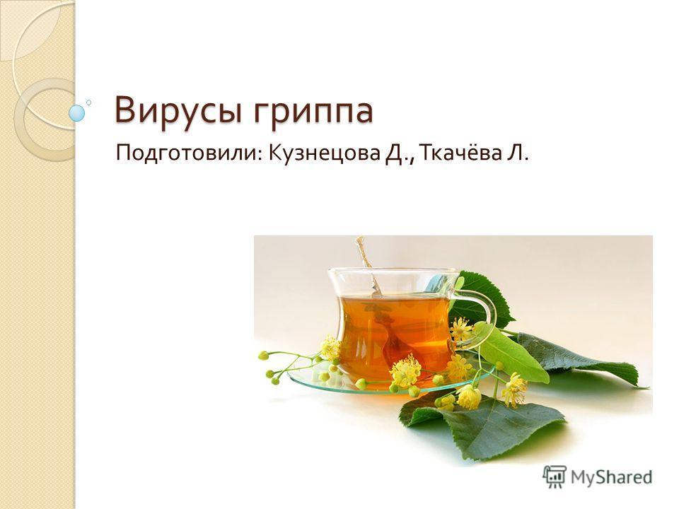 Вирусы гриппа Подготовили : Кузнецова Д., Ткачёва Л.
