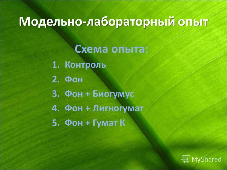 Модельно-лабораторный опыт Схема опыта: 1.Контроль 2.Фон 3.Фон + Биогумус 4.Фон + Лигногумат 5.Фон + Гумат К