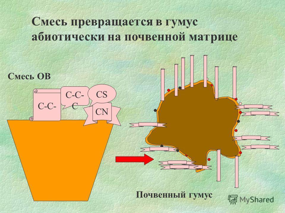 С-С- CN С-С- С CS Смесь превращается в гумус абиотически на почвенной матрице Смесь ОВ Почвенный гумус