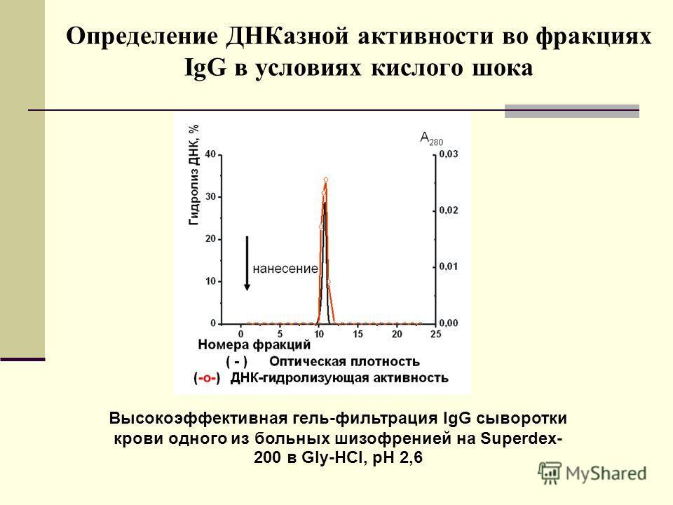 Определение ДНКазной активности во фракциях IgG в условиях кислого шока 2 4 3 1 Высокоэффективная гель-фильтрация IgG сыворотки крови одного из больных шизофренией на Superdex- 200 в Gly-HCl, pH 2,6