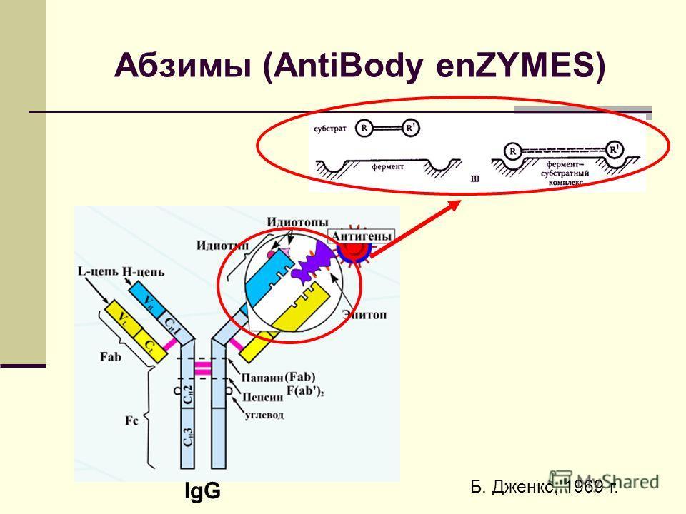 Абзимы (AntiBody enZYMES) IgG Б. Дженкс, 1969 г.