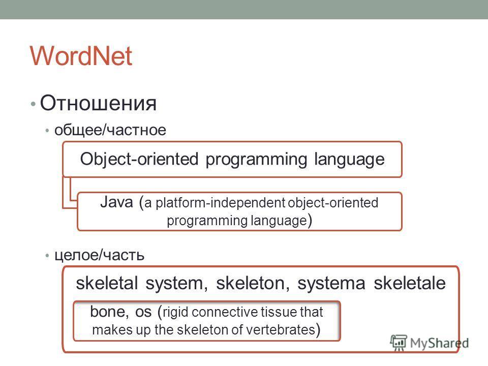WordNet Отношения общее/частное целое/часть Object-oriented programming language Java ( a platform-independent object-oriented programming language ) skeletal system, skeleton, systema skeletale bone, os ( rigid connective tissue that makes up the sk